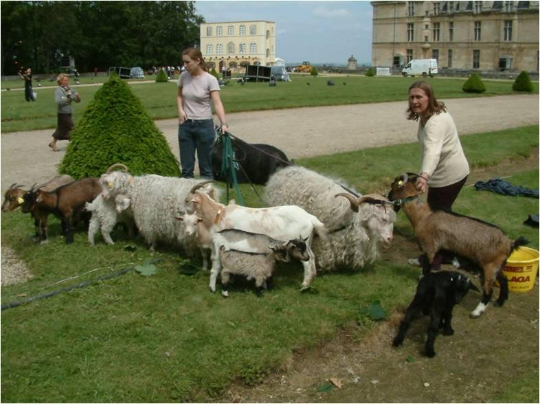 sev et mart leonardo chèvres